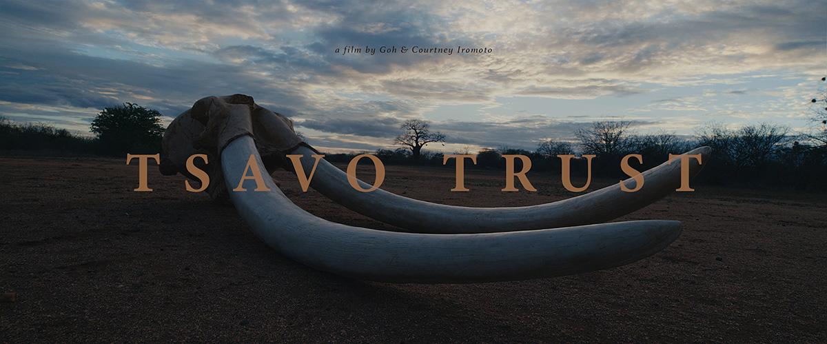 Tsavo Trust – A Short Film