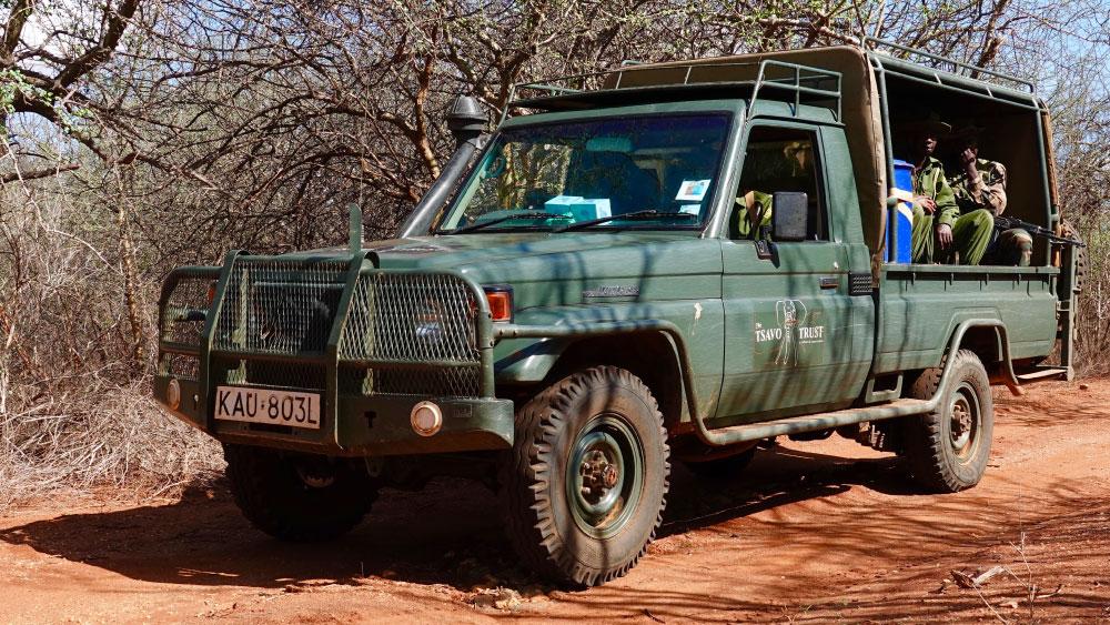 Tembo Truck