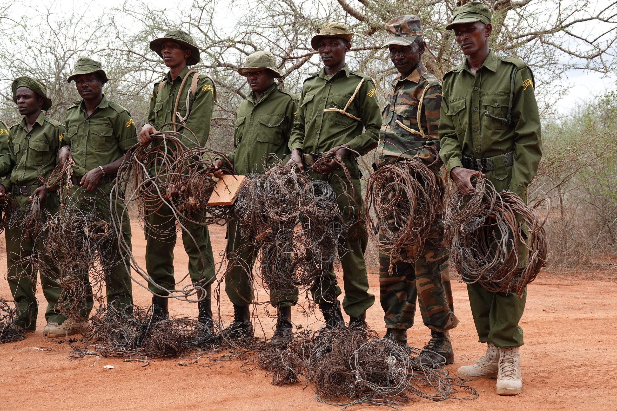4 Signs Conservation Efforts Are Working In The Tsavo Conservation Area