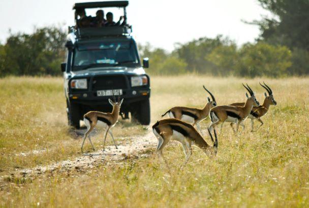Conservation Kenya